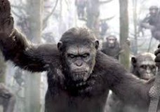 A growing nation of genetically evolved apes led by Caesar is threatened by a band of human survivors of the devastating virus unleashed a decade earlier. They reach a fragile peace, but it proves short-lived, as both sides are brought to the brink of a war that will determine who will emerge as Earth's dominant species.